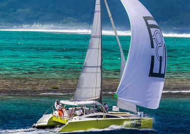 Ekolokat : vive le Pacifique !
