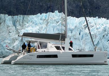 Kallima en Alaska : Glacier Bay, ou la vie sauvage