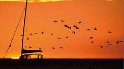 Walvis Bay – Namibie