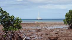 Louisiades, l'archipel du bout du monde… (2e partie)  Mauvais coup…