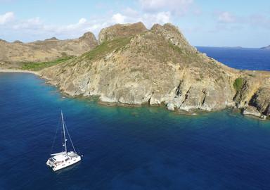 Sea View : Entre Barbuda et Saint-Barth, rendez-vous avec… les baleines !