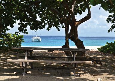 Nemesis : Le bonheur d'une année sabbatique aux Antilles