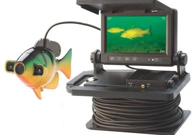 Vidéo sous-marine