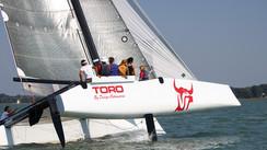Toro 34