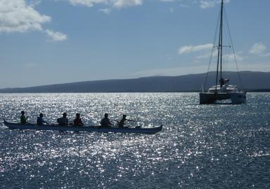 Kallima : sailing in Hawaï